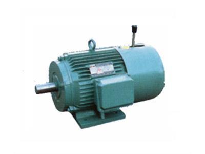 YEJ系列电磁制动三相异步电动机(-)