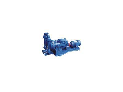 DBY型电动隔→膜泵(DBY型)