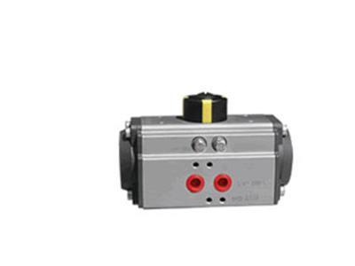 美国爱一旁诺气动执行器(RT020-2700DA/SR)