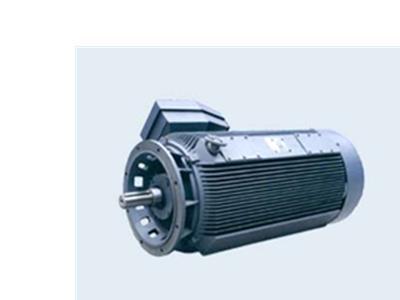 高壓電動機(機 座 號:355 - 560)
