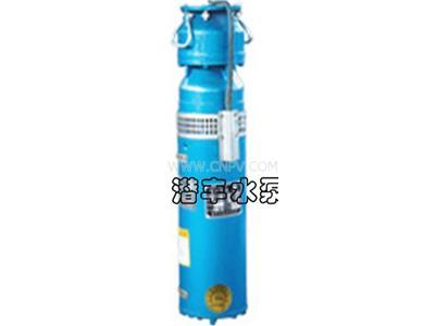 喷泉水泵(QSP65-7-2.2)