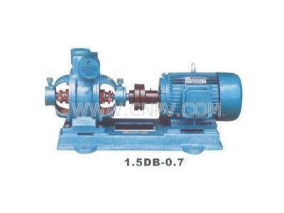 供应双级旋涡那冷光泵(1.5DB-0.7)