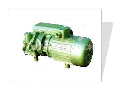 XD旋片式真空泵(XD旋片式真空泵)