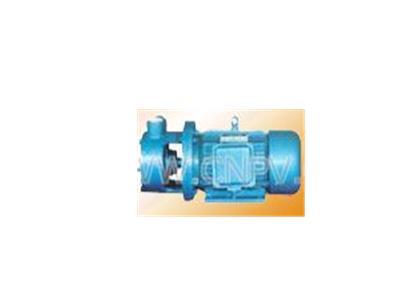 W型單級旋渦泵(W)