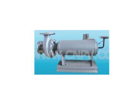 逆循环型带连接体(R型)屏蔽电泵(65-50-200)