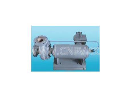 基本型带连接体屏蔽电泵(65-50-200)