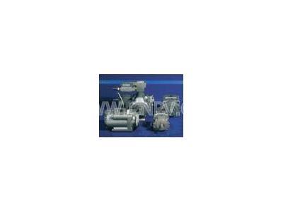 ATOS意大利阿托斯液压泵(液压泵)