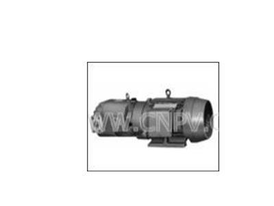 TOYOOK泵(HBPV-K※※(L)-FA1-※RA)