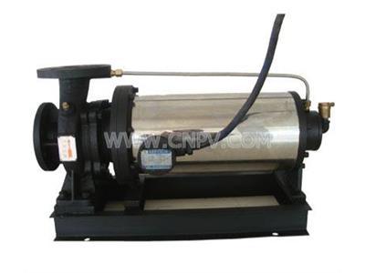 PBW卧式屏蔽离心泵(PBW80-160)