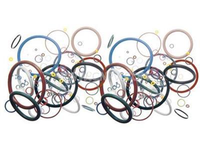 特氟龙包覆O型圈(DN15-800)