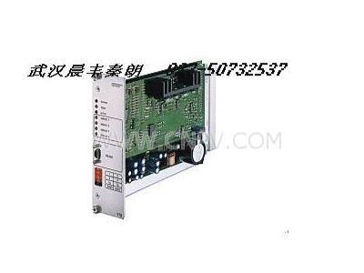VT3006-3X/放大器(VT3006-3X/)