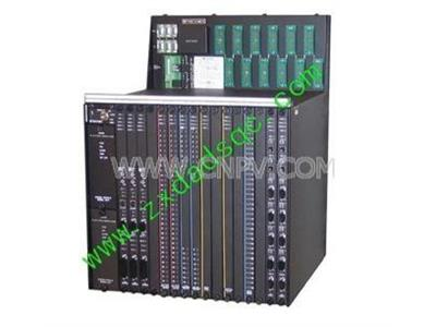 Triconex 4200,4200(Triconex 4200)