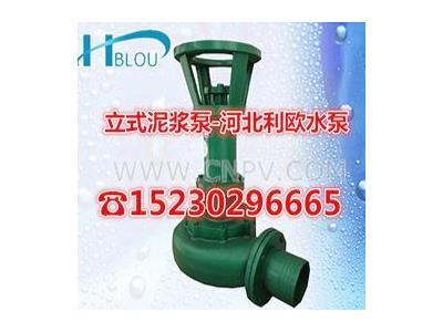 NL立式泥浆泵污水泥浆泵液嗡下泵 3/4寸(NL100-10-7.5KW)