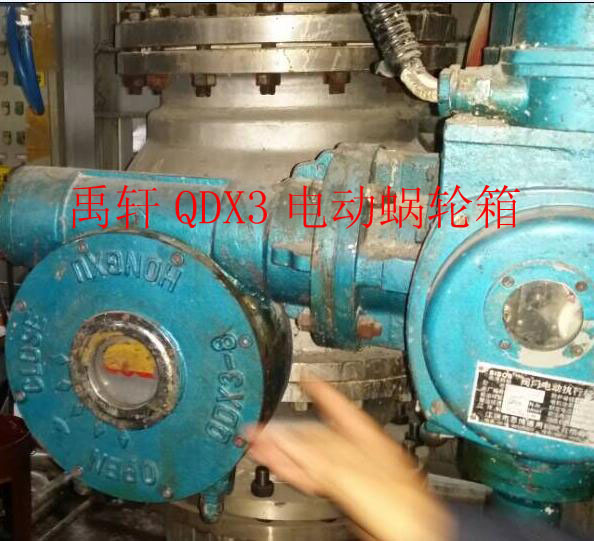 QDX3-D9电动蜗轮人海茫茫箱 输出力矩Nm12000电动减速被安再炫猛力推了机