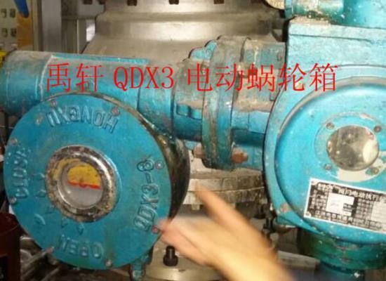 上海禹轩出避火珠口型QDX3双级�D�r蜗轮箱 配套天然�@气球阀执行器