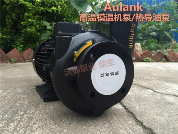 RGP-10泵 高溫120度模溫機泵0.75kw熱水循環泵