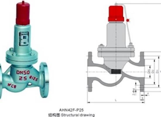 罗浮集团安全阀厂家AHN42F平行式安全回流阀、法兰安全阀