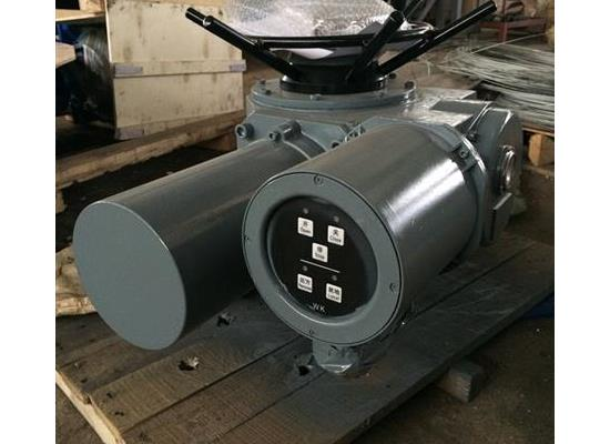 电动头DZW120-24-A00-WK(机电一体化)