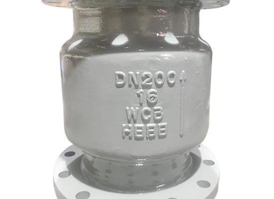 H42H-16C 铸钢立式止回阀