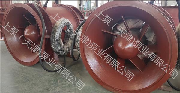安徽滁州大流量貫流泵