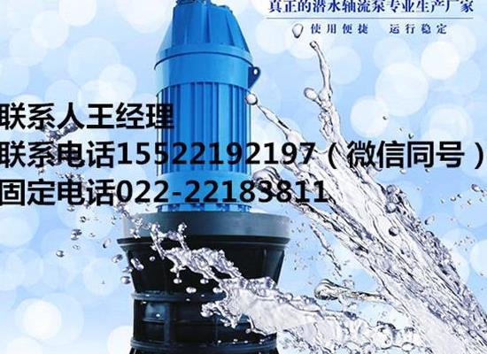 大流量潜水轴流泵水利工程用泵