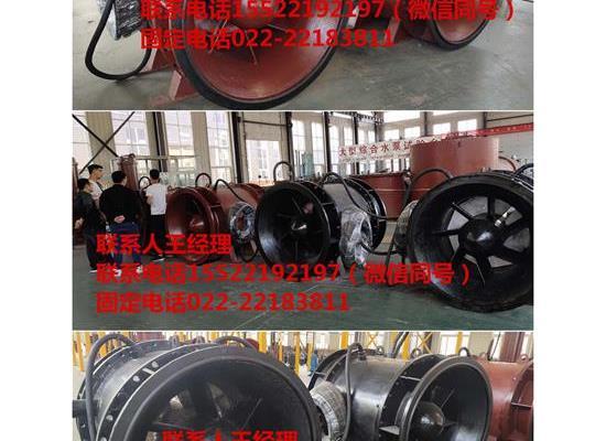潜水贯流泵S型叶丹药轮双向排水泵