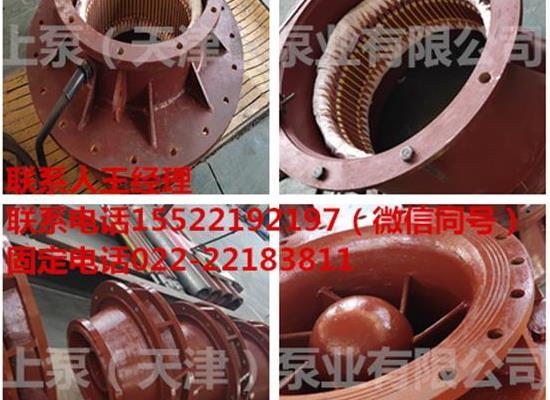 安徽芜湖水利工程用全贯流排话水泵