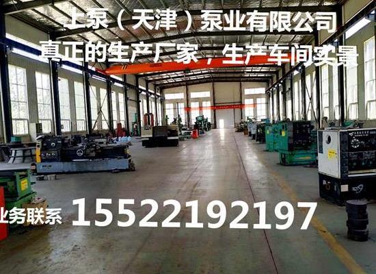 安徽安庆潜水贯流泵大流量排水泵
