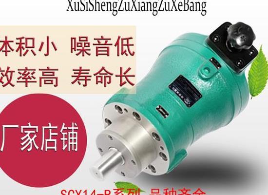 旭思盛 SCY14-1B 轴向柱塞泵 高压油泵 柱塞泵