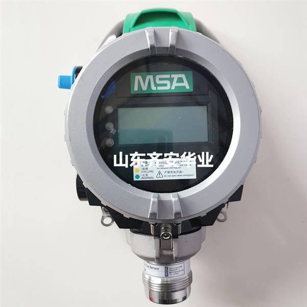 MSA品牌PrimaX P一氧化碳气体探测器10129547
