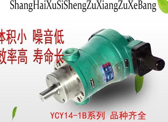 上海旭思盛 10YCY14-1B軸向柱塞泵 高壓油泵 柱塞泵