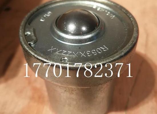 R053222210力士樂萬向滾珠筒軸承R053XX22XX