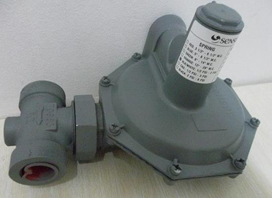 供应SENSUS143-80燃气调压器/燃气减压阀
