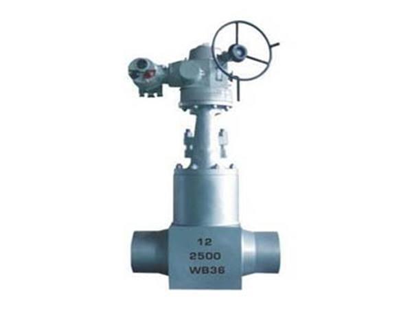 Z9(5)61Y高温高压电站闸阀