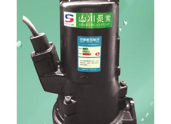 双铰刀切碎式排污泵