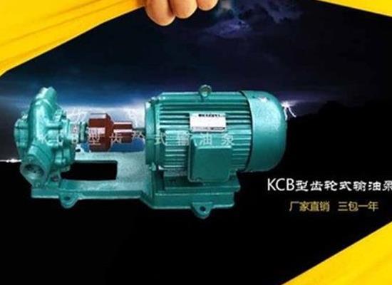 供应KCB齿轮式输油泵 KCB型不锈钢齿轮油泵 KCB-18